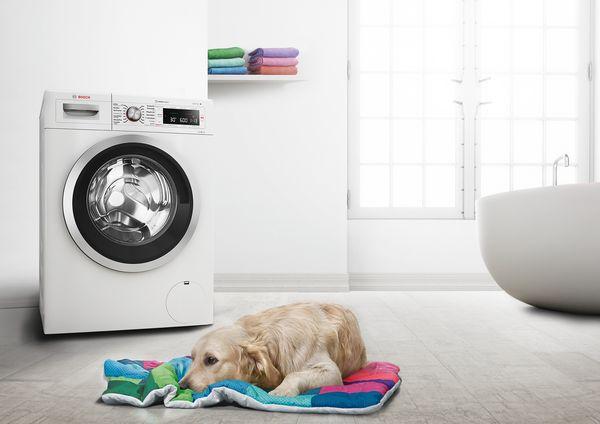 Bosch Kühlschrank Zu Kalt : Hygienisch rein ab 20 grad: bosch waschmaschinen mit