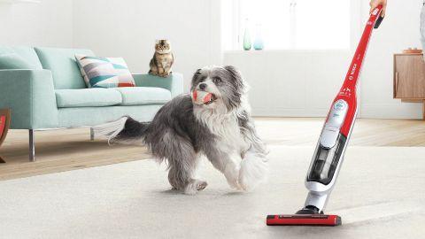Vacuum cleaners | Bosch