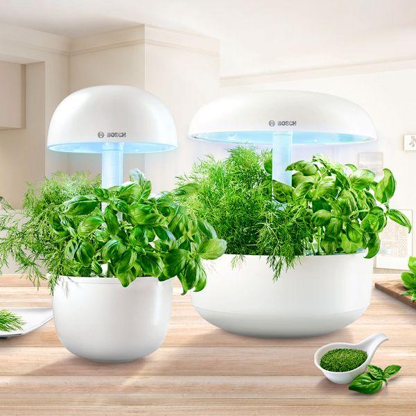 Smart Indoor Gardening Bosch Hausgeräte