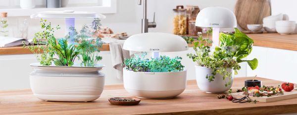 Smart Indoor Gardening Bosch Home Appliances